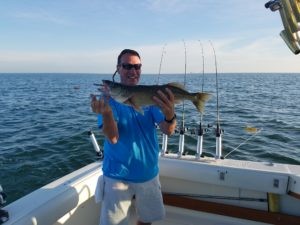 2017 Lake Erie Fishing Forecast